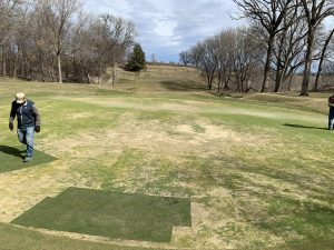 Bentgrass patches from previous fall are healthy and strong, poa is in various states of health throughout the rest of the green.