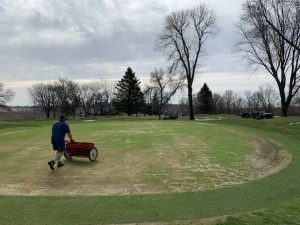 Drop seeding #16 green with bentgrass after verticutting.